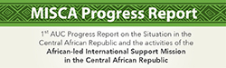 1st Progress Report of the Commission of the African Union on the situation in the Central African Republic and the activities of the Afican-led International Support Mission in the Central African Republic
