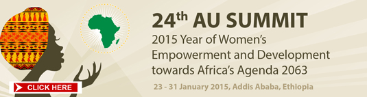 24th AU SUMMIT BANNER