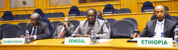 The 734th meeting of the AU Peace and Security Council on the situation in the Republic of Guinea Bissau