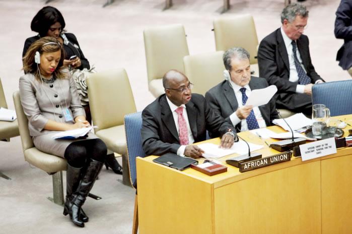 Image result for african union ambassador