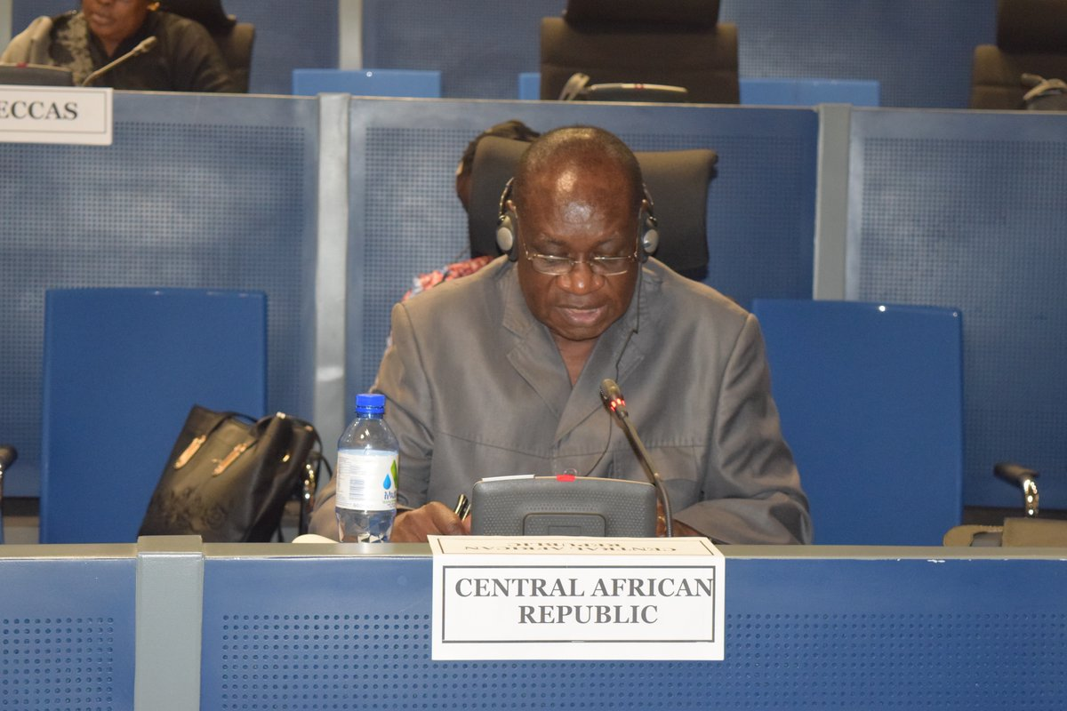 848th meeting of the Peace and Security Council of the AU on the situation in the Central African Republic (CAR)