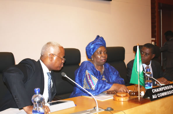 Consultations between the Chairperson of the Commission of the African Union and the Member Countries of the United Nations Security Council on the situation in Mali