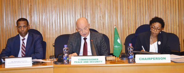 Communique of the 753rd PSC meeting on the political stabilization process in Somalia and on the AU Mission in Somalia (AMISOM) activities and exit strategy
