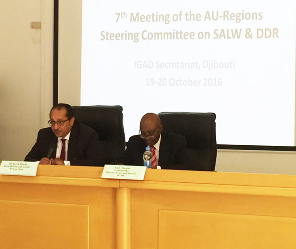 Opening Statement by Dr. Tarek A. Sharif, Head, DSD on the  Seventh Meeting of the AU-Regions Steering Committee on Small Arms and Light Weapons (SALW) and Disarmament, Demobilization and Reintegration (DDR)