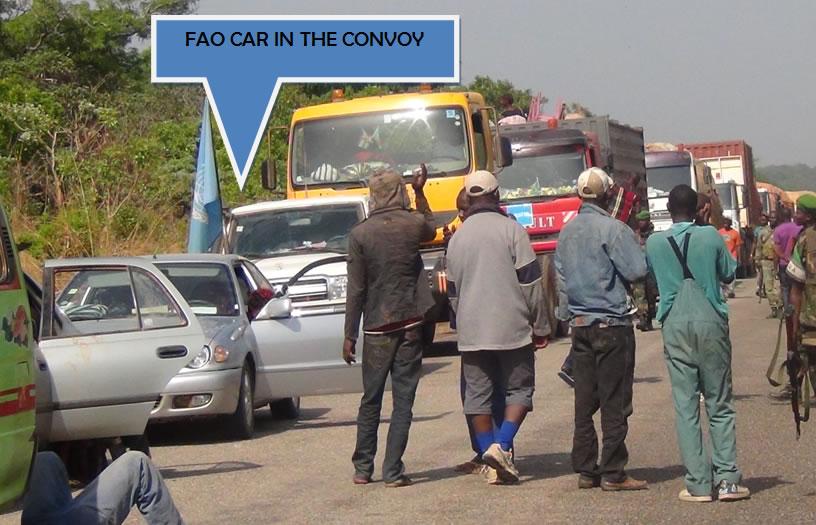 Véhicules de la FAO dans le convoi protégé par les troupes de la MISCA