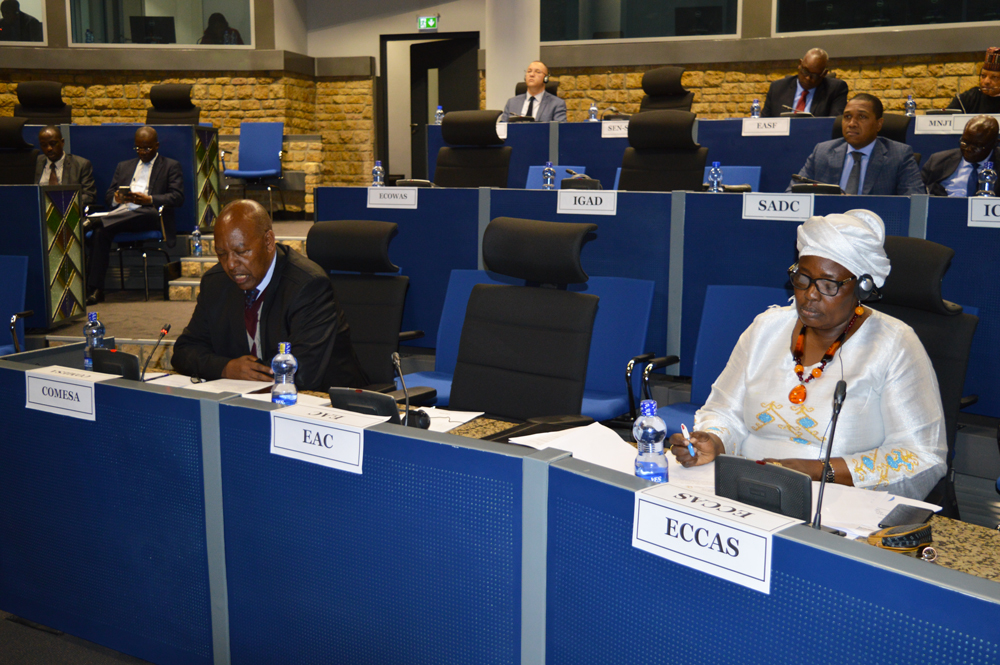 Communique of the 870th meeting of the PSC on the Harmonization and Coordination of Decision-making processes/Division of labour between the PSC and the Policy Organs of the Regional Economic Communities/Regional Mechanisms (RECs/RMs) for Conflict prevention, management and Resolution and the Promotion of Peace, Security and Stability in Africa