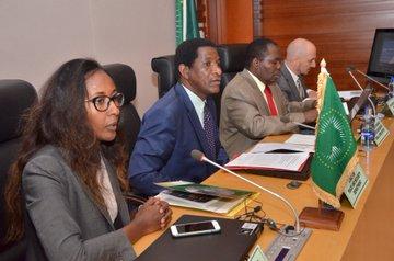 Communique adopté par le Conseil de paix et de sécurité lors de sa 860e réunion tenue le 18 juillet 2019, sur la prolifération illicite, la circulation et le trafic des armes légères et de petit calibre,