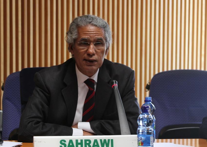 Report of the Chairperson of the Commission on the evolution of the peace process in Western Sahara and other related issues